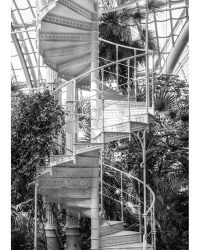 Greehouse staircase
